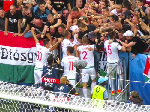 Hungary players celebrate with their fans.
