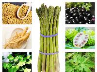52 Herbal Tradisional Untuk Mengobati Diabetes (Penyakit Gula)