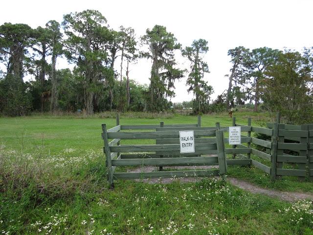 Felts Audubon Preserve, Florida