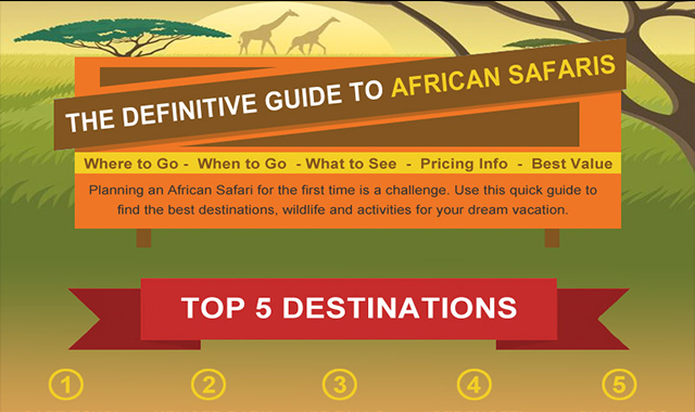 African Safaris – The Definitive Guide