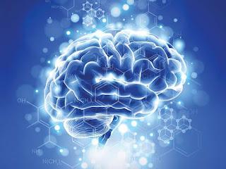 दिमाग के कुछ रोचक तथ्य – Amazing facts about human brain
