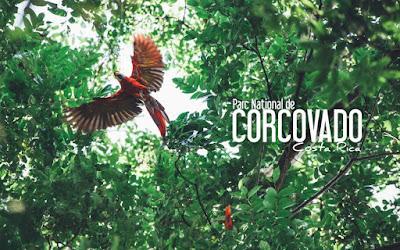 Affiche publicitaire du parc national Corcovado au Costa Rica.