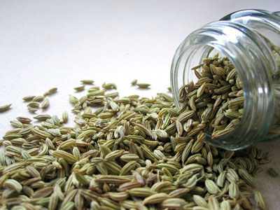 fennel seeds for gastric problem