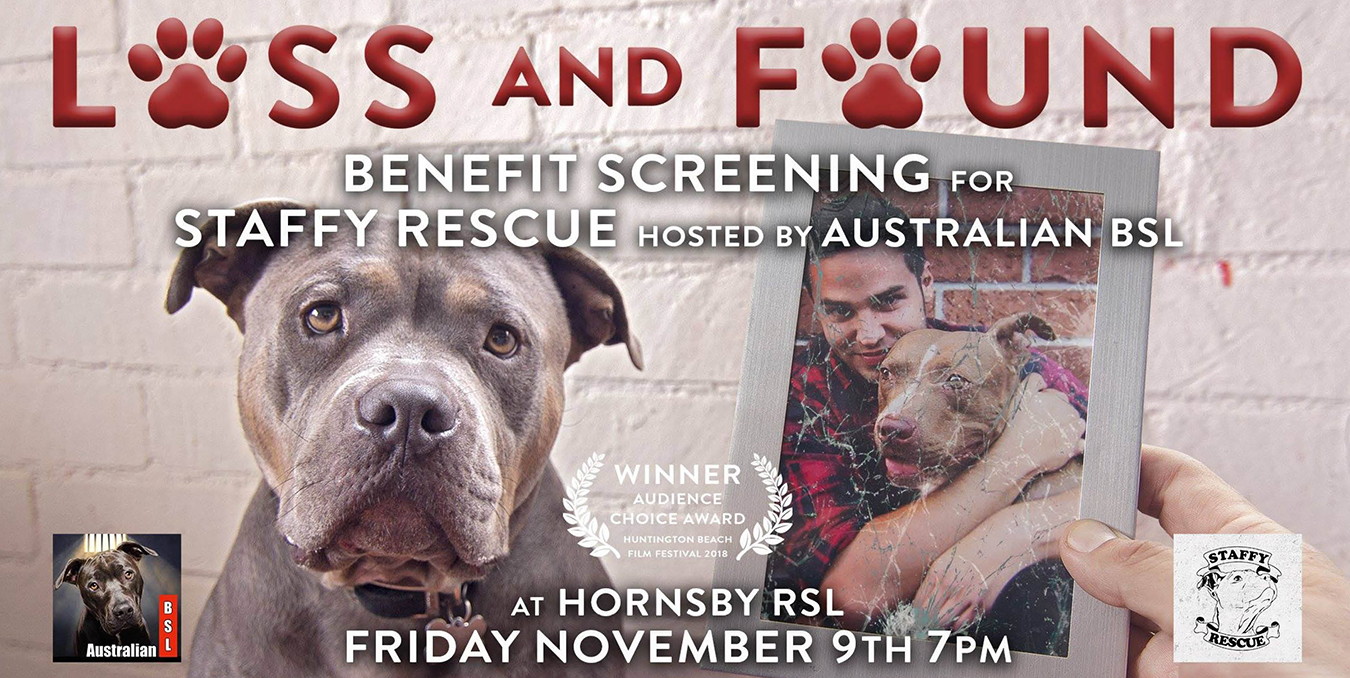 Sad Staffy dog on poster for Loss and Found movie premiere fundraiser in Sydney