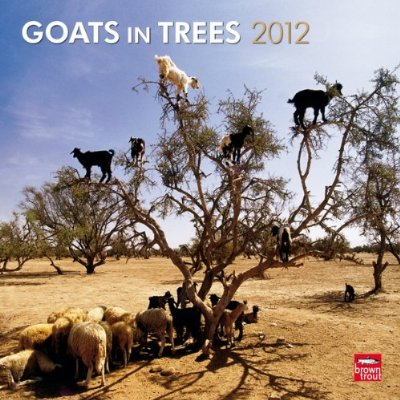 Goats In Trees Calendar 2012 Book Dirt: 10 Most Biz...