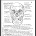 جميع كتب التشريح - أناتومي للدكتور سامح دوس (المرجع الذي ينصح به أغلب طلاب الطب) Anatomy books by dr. Sameh doss