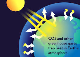 Apa sih, Greenhouse Effect itu?