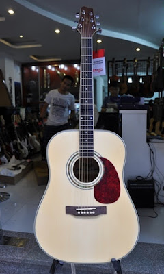 Đàn Guitar Acoustic Stagg SW209NS
