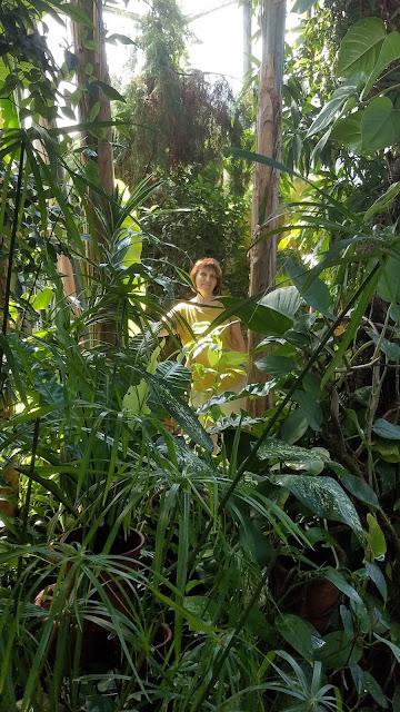 Самарский детский эколого-биологический центр: настоящие тропики или джунгли...