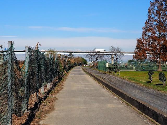 荒川 治水橋