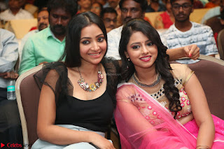 Geethanjali and Swetha Basu at Mixture Potlam Movie Audio Launch Feb 2017 016.JPG