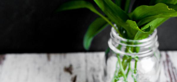 Bärlauch-Ziegenkäse Flammkuchen, Fleurcoquet