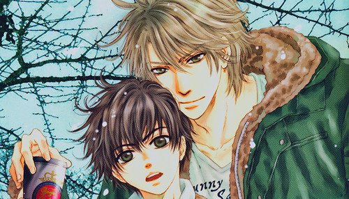 Super Lovers anime