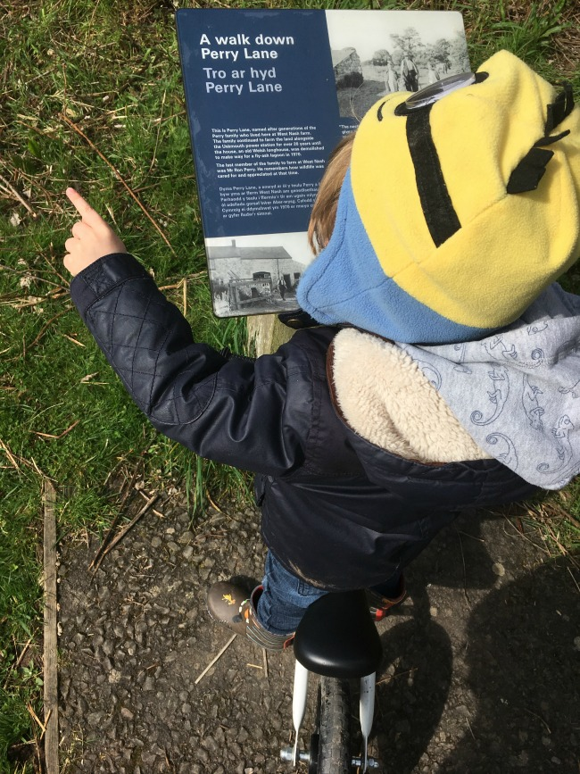 Our-weekly-journal-10-April-toddler-looking-at-sign-at-Newport-Wetlands-A-Walk-down-Perry-Lane