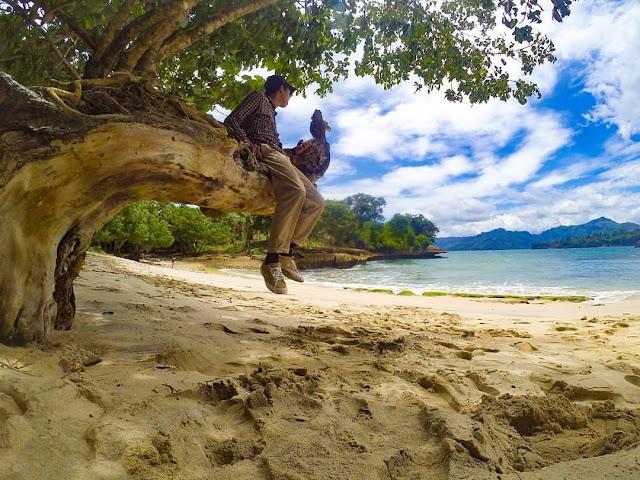 5 Pantai Tulungagung yang cocok Menggantikan Pantai Kuta Bali