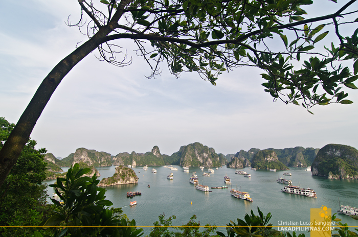 Ti Top Island Halong Bay Cruise Overnight