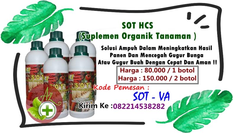 SOT HCS (Suplemen Organik Tanaman )
