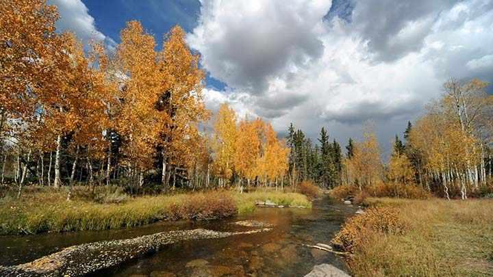 sonbahar manzaralı dere resimleri