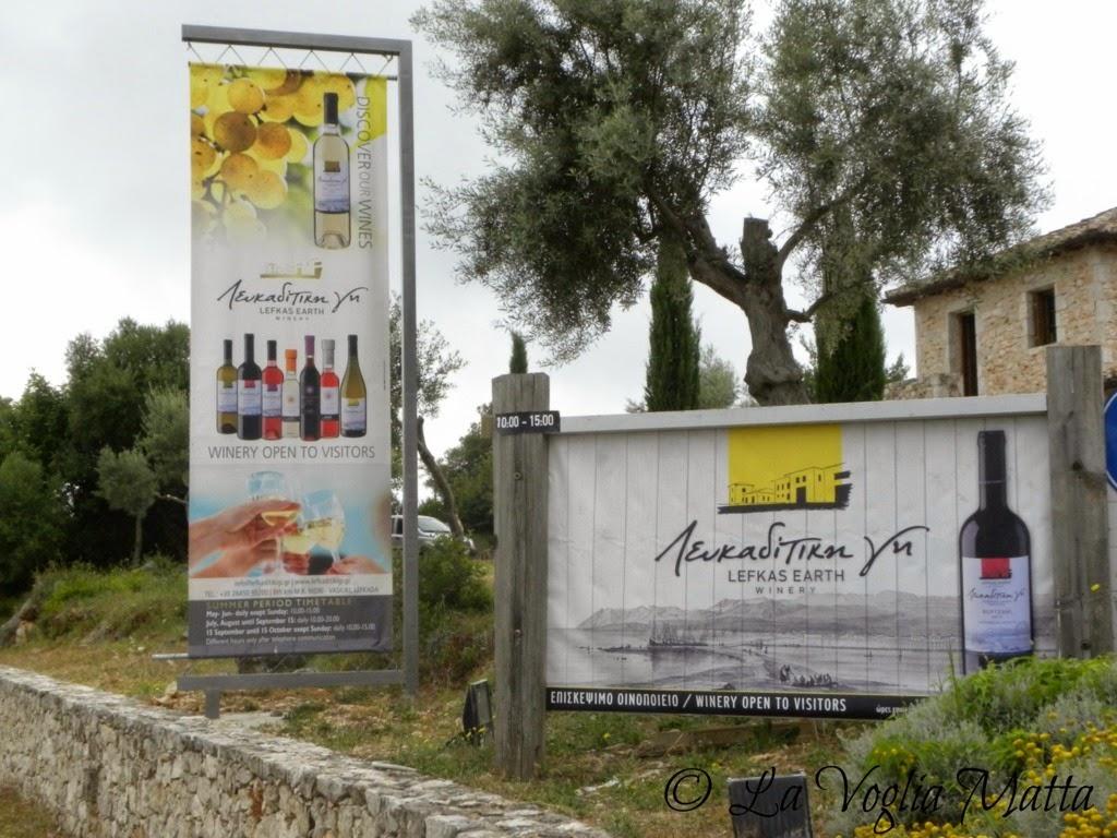 Lefkada azienda vinicola