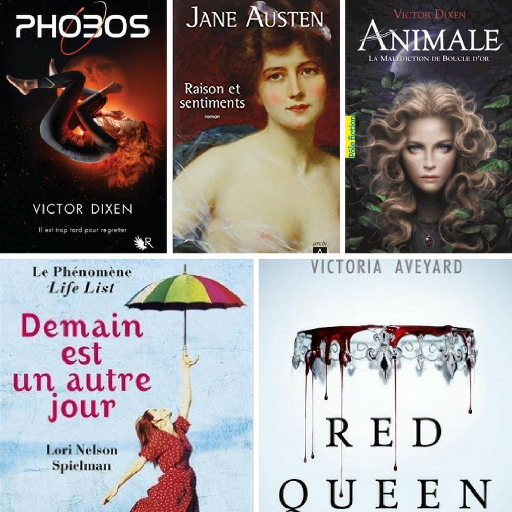 5 idées lecture pour vacances d'été - Avis - Phobos, raison et sentiments, animale, demain est un autre jour, red queen -DeuxAimes
