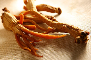 Red Ginseng for Erectile Dysfunction