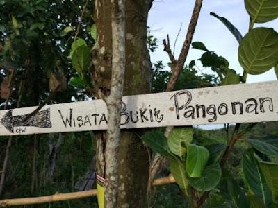 Mencari Jejak Bukit Pangonan Yang Konon Katanya menuju puncak