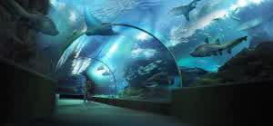 Siam Ocean World