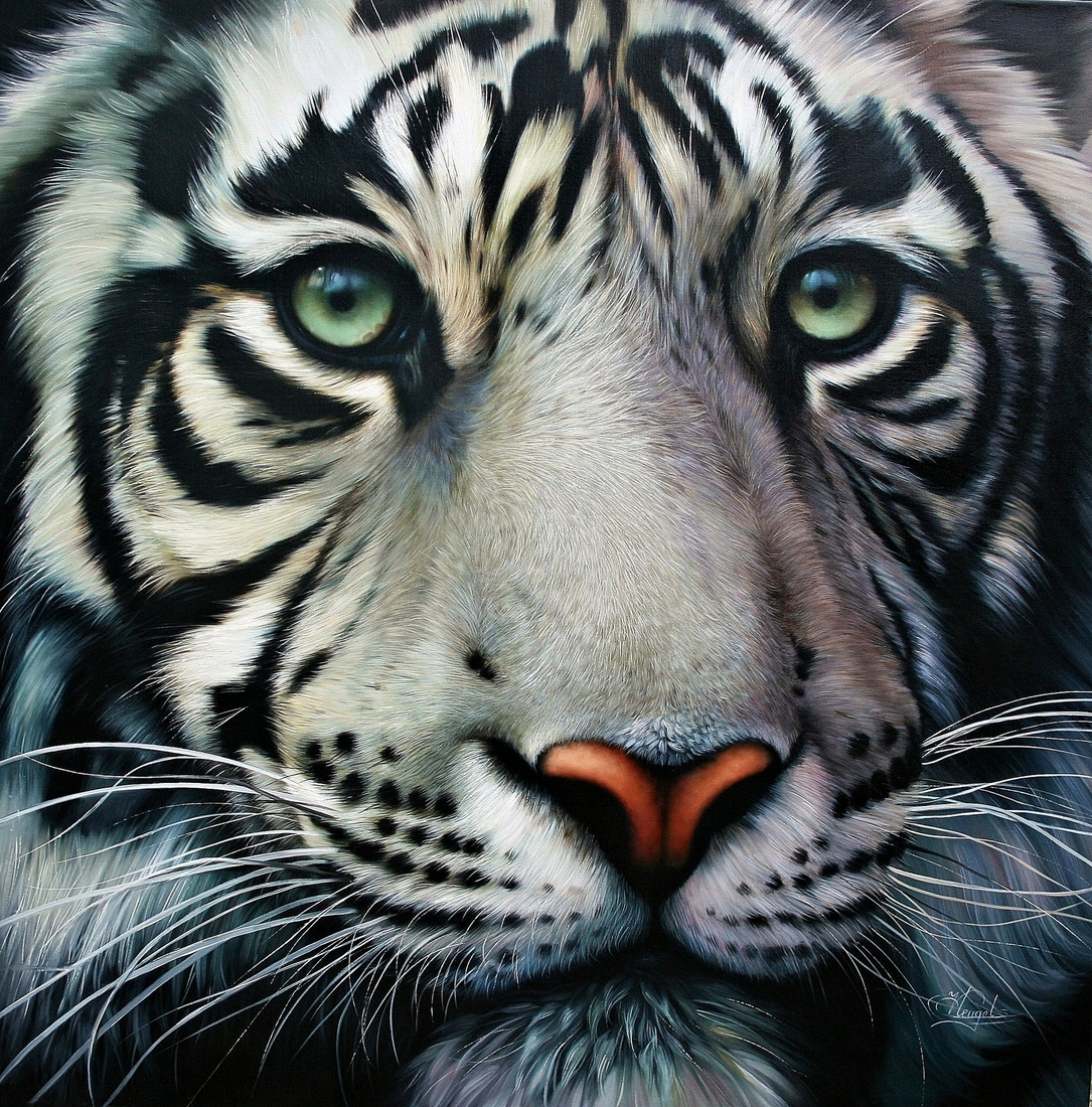 10-White-Tiger-Christiane-Vleugels-Flawless-Paintings-with-Incredible-Detail-www-designstack-co