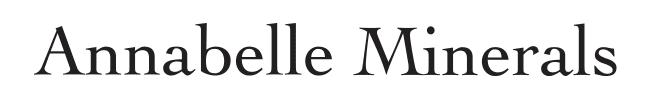 Znalezione obrazy dla zapytania annabelle minerals logo