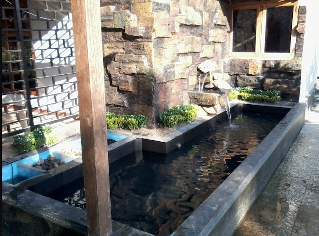 kolam ikan minimalis di lahan sempit 2017