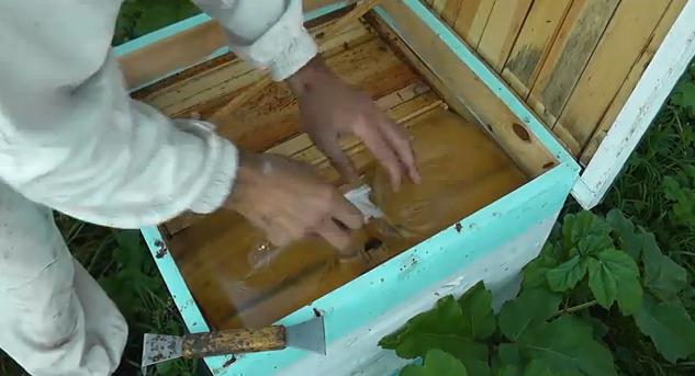 Διεγερτική τροφοδοσία μελισσιών με την μέθοδο της σακούλας!!!