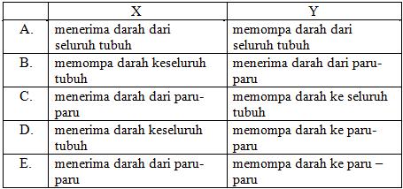 Contoh Soal USBN Biologi SMA dan Kunci Jawabannya ~ Part-2 ...