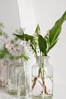 Białe kwiaty na stole