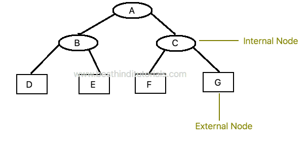 Extended-Binary-Tree-in-Hindi