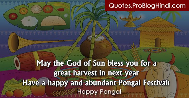pongal quotes, happy pongal, pongal images, pongal wishes, pongal quotes in english, pongal quotes in tamil, pongal quotes in telugu, pongal funny quotes, pongal love quotes, pongal greeting cards, thai pongal quotes, muttu pongal quotes