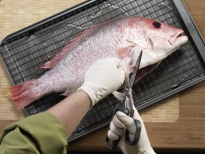 Hướng dẫn làm cá nhanh và chuyên nghiệp