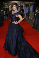 Payal Ghosh aka Harika in Dark Blue Deep Neck Sleeveless Gown at 64th Jio Filmfare Awards South 2017 ~  Exclusive 149.JPG