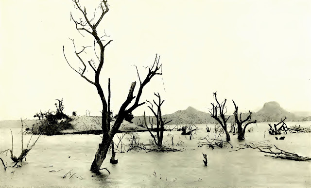 Part of the Volcano Island submerged during the eruption.