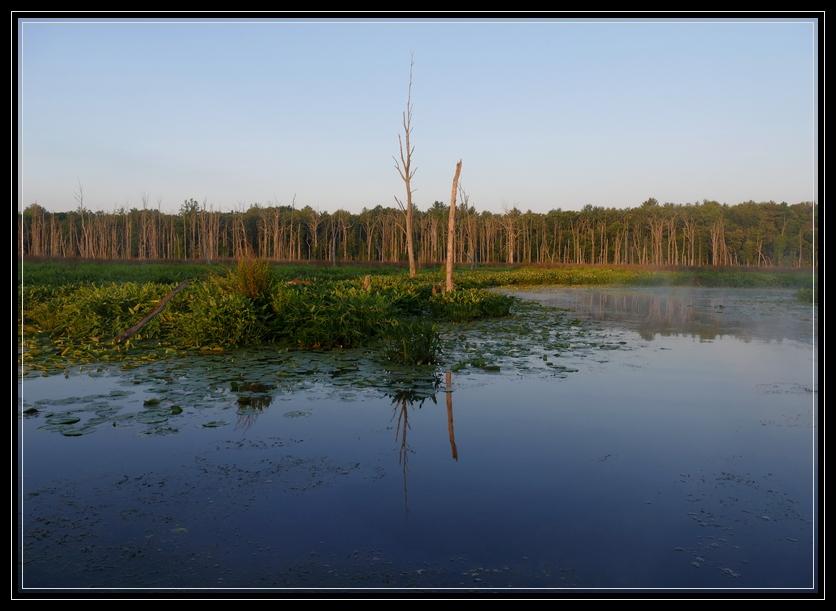 Round Lake Preserve