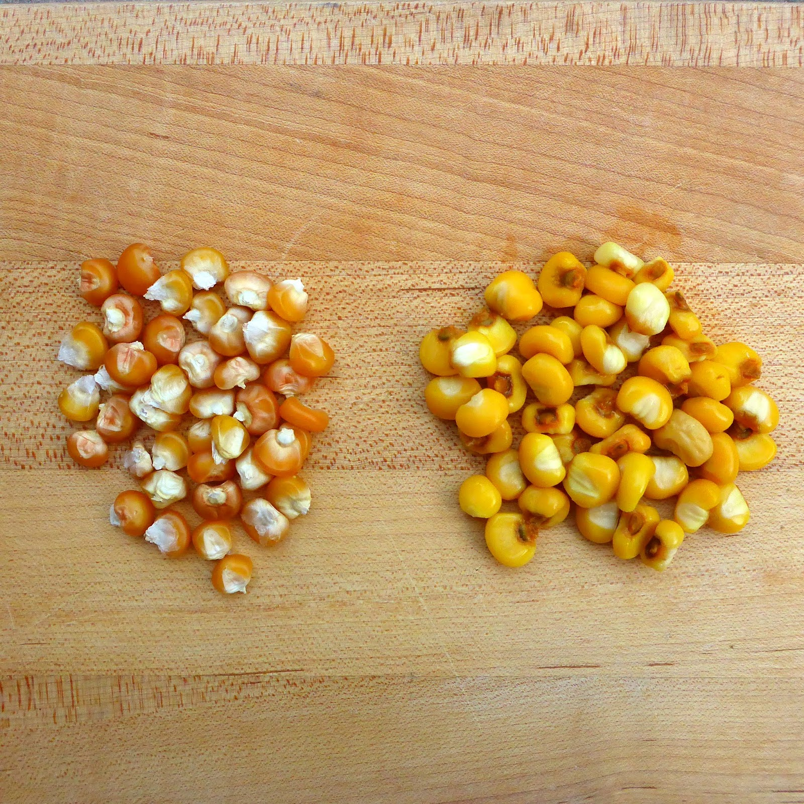 From seed to table nixtamalized corn for posole i liken the process of cooking posole to the process of cooking dry beans you start with a raw dry product soak it and then cook it albeit ccuart Choice Image
