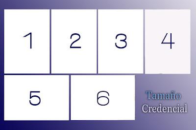 4x6-Credencial-3 ,5-x-5-cm-tamaño-oficial