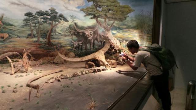 Sejarah Singkat Museum Purbakala Saringan
