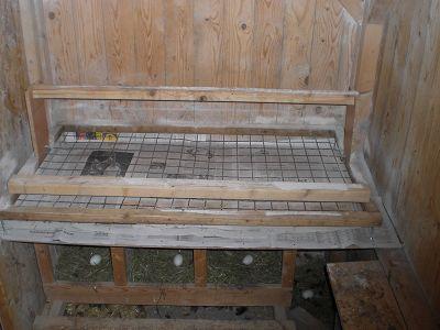 sitzstangen umger stet. Black Bedroom Furniture Sets. Home Design Ideas