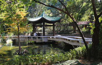 Hong-Kong-Kowloon-Park