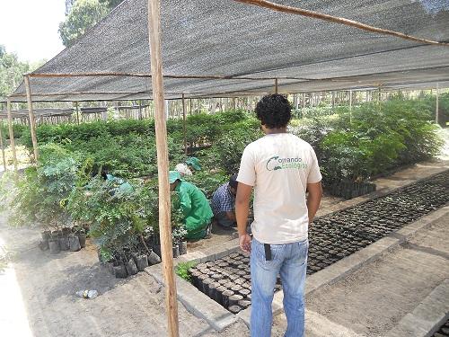 Que es reforestacion yahoo dating 8