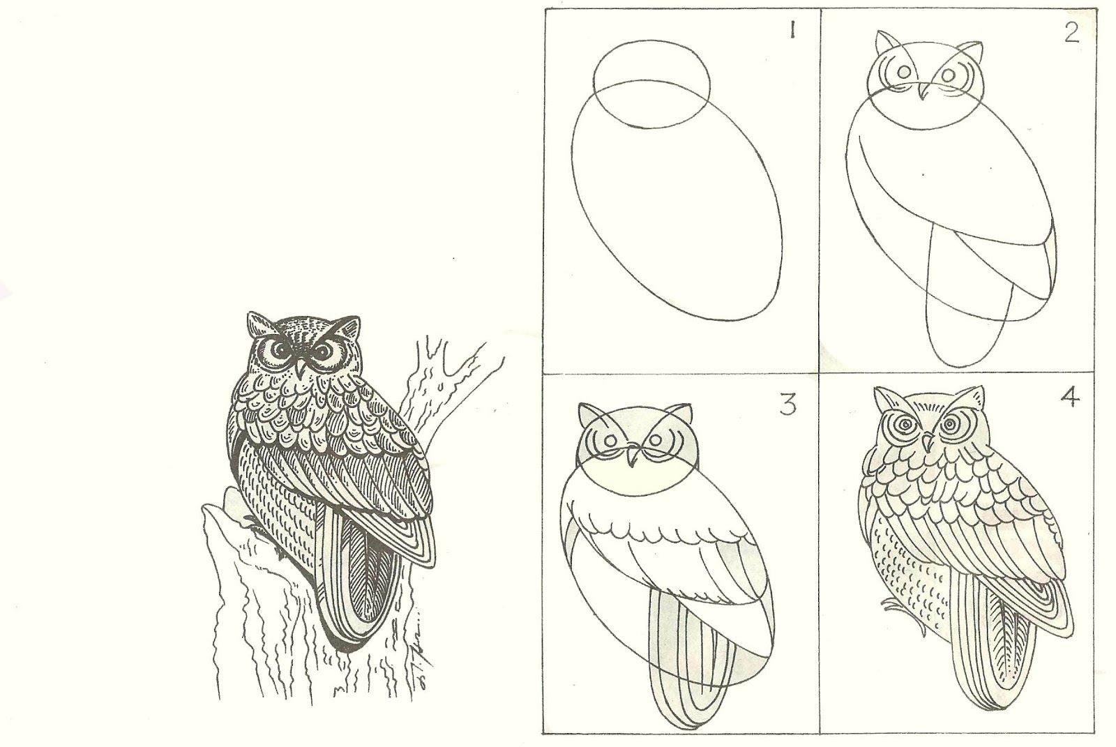 studentsdrawing: ANIMAL STEP BY STEP EASY OUTLINE DRAWING ...