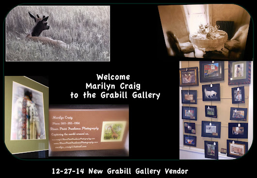 12-27-14 Welcome Marilyn Craig to the Grabill Gallery