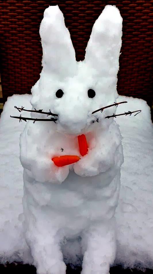 Seattle snowbunny 2 - 4 8