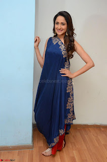 Pragya Jaiswal in beautiful Blue Gown Spicy Latest Pics February 2017 033.JPG