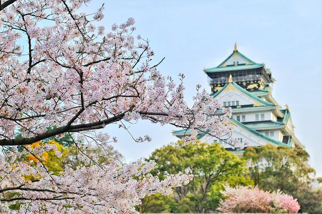 Liburan ke Jepang saat musim semi bisa dimanfaatkan dengan mengunjungi sejumlah lokasi terbaik untuk menikmati keindahan bunga sakura.